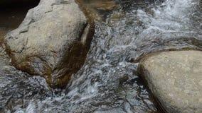 Água corrida através da rocha e da pedra da passagem do rio na floresta video estoque