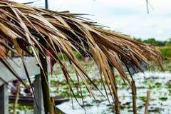 A água da chuva do telhado é folhas secas foto de stock