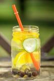 Água da desintoxicação Fotos de Stock