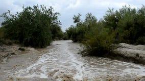 Água da inundação que apressa-se abaixo de uma lavagem do deserto após uma monção pesada em Phoenix, o Arizona EUA vídeos de arquivo