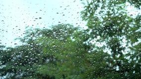 Água das gotas no vidro vídeos de arquivo
