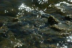 Água de brilho no fundo raso do lugar Imagem de Stock
