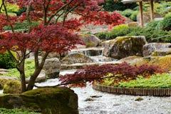 Água de conexão em cascata em um parque Fotografia de Stock