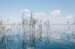 Água de cristal do lago Naroch fotografia de stock royalty free