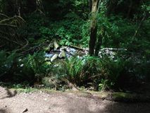 Água de fluxo Foto de Stock Royalty Free