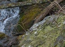 Água de fluxo com o deadfall do ramo de árvore e diorito coberto musgo imagem de stock royalty free
