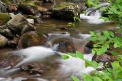 Água de fluxo no córrego Foto de Stock