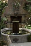 Água de fluxo verde da fonte Imagem de Stock