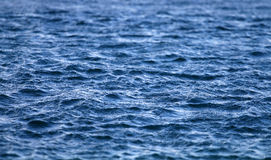 Água de mar Fotos de Stock Royalty Free
