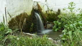 Água de mola Fotografia de Stock