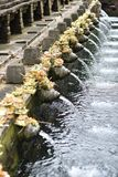Água de mola santamente com artes hindu e arquitetura do ` s no Balinese Tirta Empul fotos de stock royalty free
