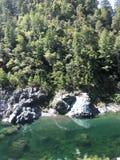 Água de Oregon fotografia de stock