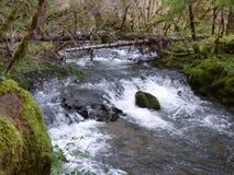 Água de pressa Foto de Stock