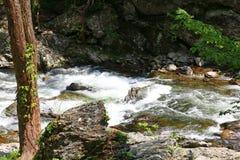 Água de pressa do rio pequeno foto de stock