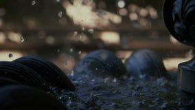 Água de queda no close-up preto da fonte, movimento lento Textura bonita da água Gotas da água no movimento lento do ar FO de tra filme