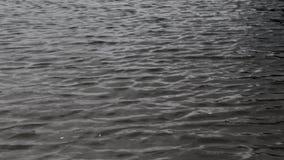 Água de superfície, mar, rio com ondas delicadas video estoque