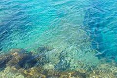 Água de turquesa Foto de Stock