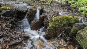 Água de um córrego pequeno Foto de Stock