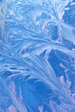 Água de vidro dos flocos de neve congelada Fotos de Stock