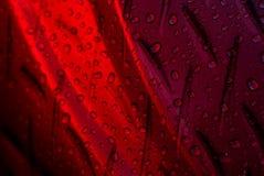 A água deixa cair o vermelho Imagem de Stock