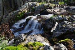Água desobstruída Foto de Stock Royalty Free