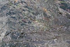 Água desobstruída Fotografia de Stock Royalty Free