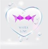 Água do amor Imagem de Stock
