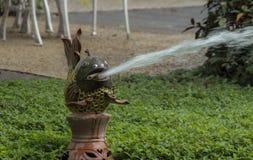 Água do bico da estátua dos peixes Fotografia de Stock Royalty Free