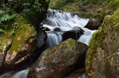 Água do córrego da montanha Foto de Stock Royalty Free
