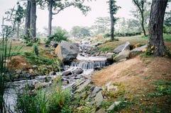 A água do córrego do rio balança a natureza Imagens de Stock
