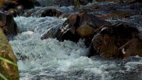Água do córrego no rio rápido no fim da montanha acima Molhe o córrego que flui rapidamente para baixo no rio rochoso Água selvag filme