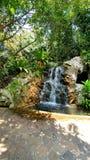 Água do fluxo no jardim verde fotos de stock royalty free