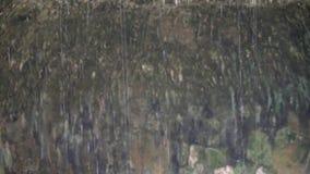 Água do gotejamento na caverna filme