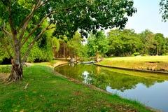 Água do jardim Imagem de Stock