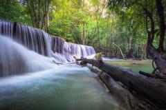 A água do khamin de Hua mea cai no parque nacional de Erawan, Kanchanabur Imagem de Stock