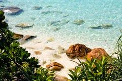 Água do mar azul clara Imagem de Stock