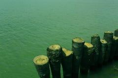 Água do mar com cerca da palmeira imagem de stock