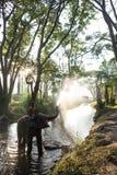 Água do pulverizador dos elefantes Foto de Stock Royalty Free