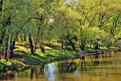 Água do rio imagens de stock