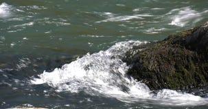 A água do rio corre rapidamente com espuma branca em rochas video estoque