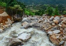 Água do rio de fluxo fria forte e do perigo imagem de stock