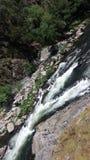 Água do rio de pressa do córrego no norte de Portugal Fotos de Stock
