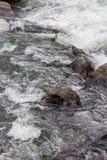 Água do rio de pressa do córrego através da garganta Colorado de onze milhas Imagens de Stock