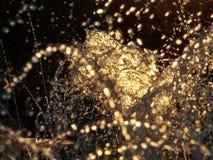 Água dourada Imagens de Stock Royalty Free