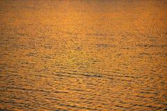 Água dourada Foto de Stock