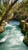 Água e cachoeira selvagens Fotografia de Stock Royalty Free