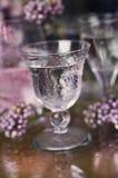 Água e flores do verão Imagens de Stock