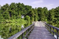 Água e floresta em Alabama com uma ponte do pé foto de stock