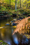 Água e pedra Fotografia de Stock