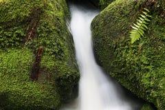 Água e pedras Foto de Stock